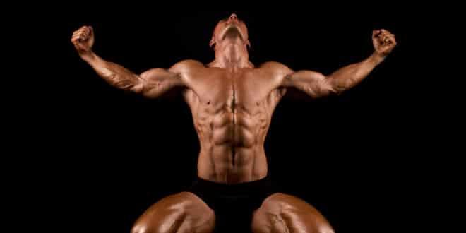 Bodybuild.